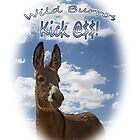 Wild Burros Kick by Corri Gryting Gutzman