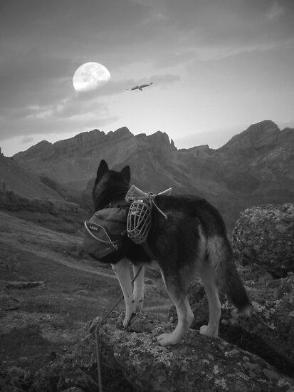 Beyond Moonrise by Graham Povey