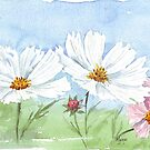March is Cosmos-time! by Maree Clarkson