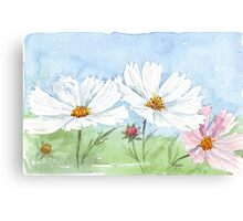 March is Cosmos-time! Canvas Print