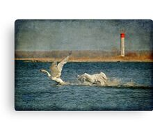 The Chase Is On Canvas Print