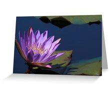 Tina Water Lily Greeting Card
