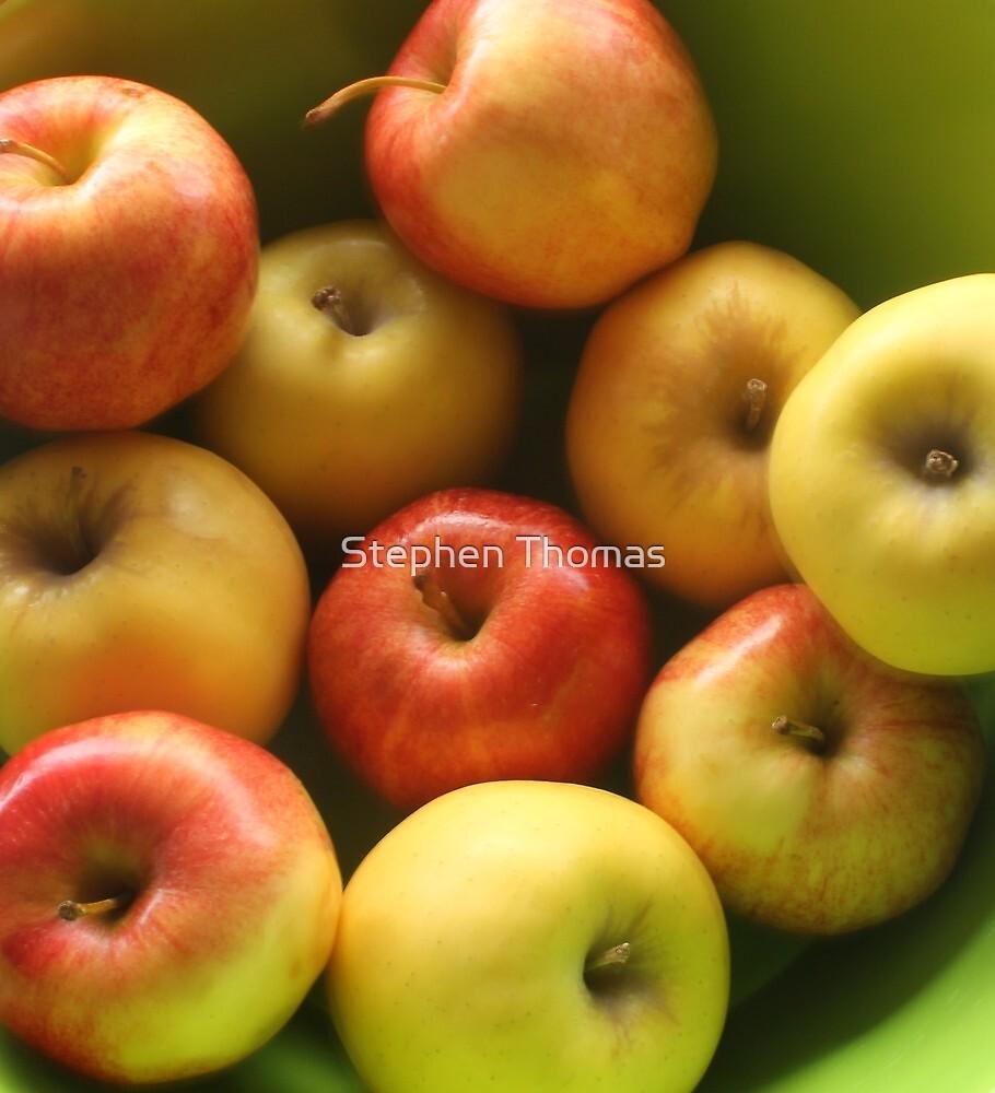 Ten Apples (still life) by Stephen Thomas