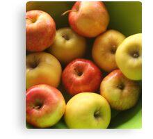 Ten Apples (still life) Canvas Print