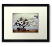 Tree In The Shed Framed Print