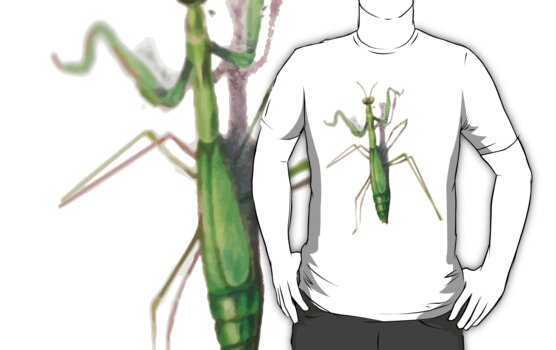 Mantis - iPhone 4, tees and stickers by marinasinger