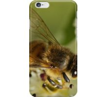 Too Bee  iPhone Case/Skin
