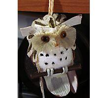 My Favorite Owl Photographic Print