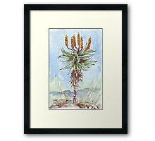 Aloe ferox painting 2 - Botanical Framed Print