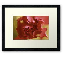 A dark rose Framed Print