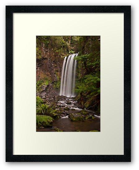 Hopetoun Falls by Danielle  Miner