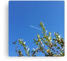 clear sky Canvas Print