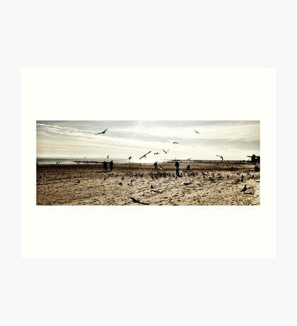 Coney Island Seagulls Art Print
