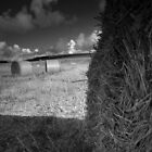 Black and White Bale by AeronJohn