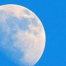 Blue Moon.. best viewed large. by supernan