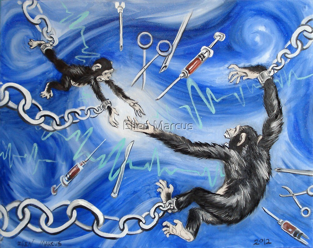 Chimps in Research by Ellen Marcus