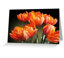 Spring fire Greeting Card