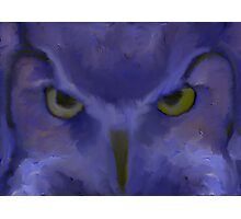 Mr Angry Eyes Photographic Print