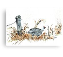 Guineas are winged wonders! Canvas Print