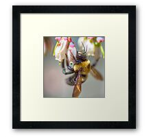 Mom and Baby matching Bee Back at 3:30 pm outfits Framed Print