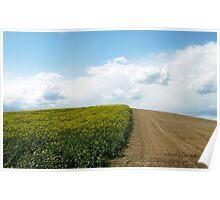 Bicolor Field Poster