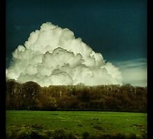 Big Cloud by Mary Ann Reilly