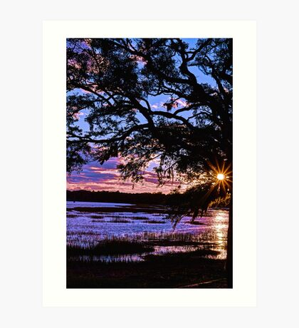 Southern Exposure Art Print