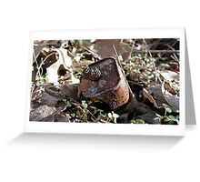 Rusted Battery Greeting Card