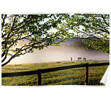 Ellalong, Hunter Valley Poster