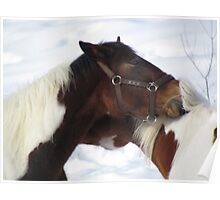 Together Forever Horses Poster