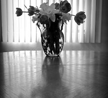 Tulips & Daffodils in Black & White by Lucinda Walter