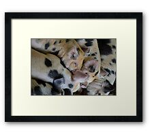 Piglet Love Framed Print
