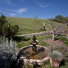 Fountain at Alma Rosa Winery by Renee D. Miranda