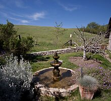 Fountain at Alma Rosa Winery by Renee D. Miranda