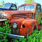 Bill's Old Truck by joevoz