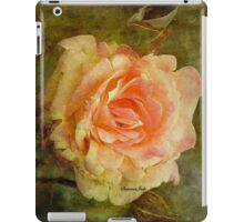Damaged ~ a Rose with a Message iPad Case/Skin