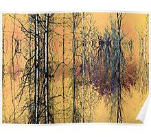 Birches ! Poster