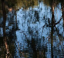 Reflections, Lake at K1 Winery by Adam JL Dutkiewicz