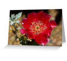 Englemann's Prickly Pear Cactus Greeting Card