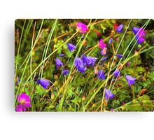 Harebells and Geraniums textured Canvas Print