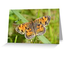 A Tiny Spring Visitor Greeting Card