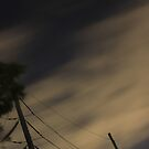 Moody Night by salvadorleary