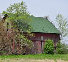 Red Barn Near Redkey, Indiana by mltrue