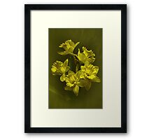 For You Mom Framed Print