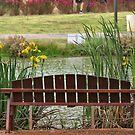 To Sit by the Irises by Nira Dabush