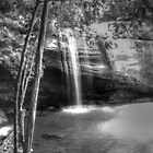 serenity falls black&white by warren dacey