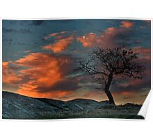 Red Sky at Night Shepherds Delight - Dog Rocks Batesford Poster