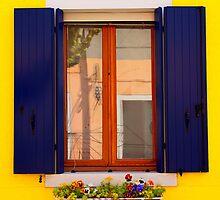 Blue Shutters by Georgia Kelleher