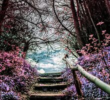 Fantasy Forest Steps by Vicki Field