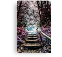 Fantasy Forest Steps Canvas Print